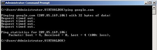 Client pinging Google.com